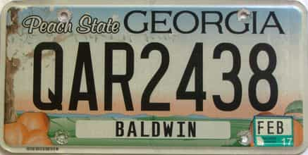 2017 Georgia Counties (Baldwin) license plate for sale