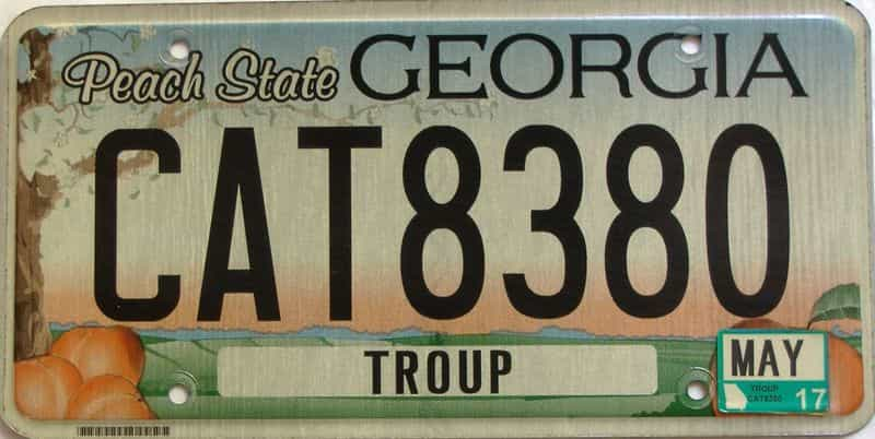 2017 Georgia Counties (Troup) license plate for sale