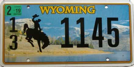 2019 Wyoming  (Single) license plate for sale
