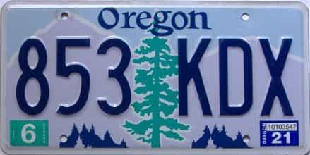 2021 Oregon  (Single) license plate for sale