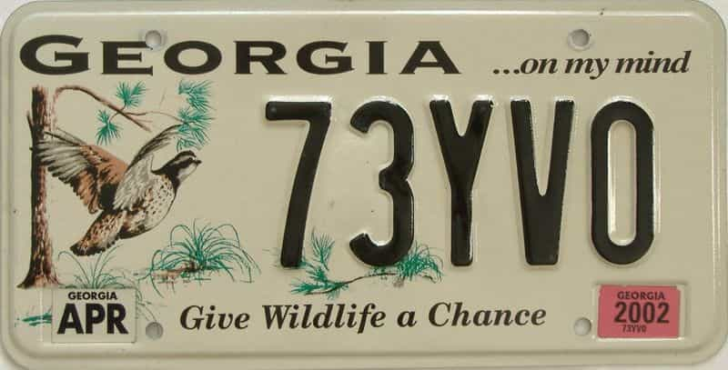 2002 Georgia (Natural) license plate for sale