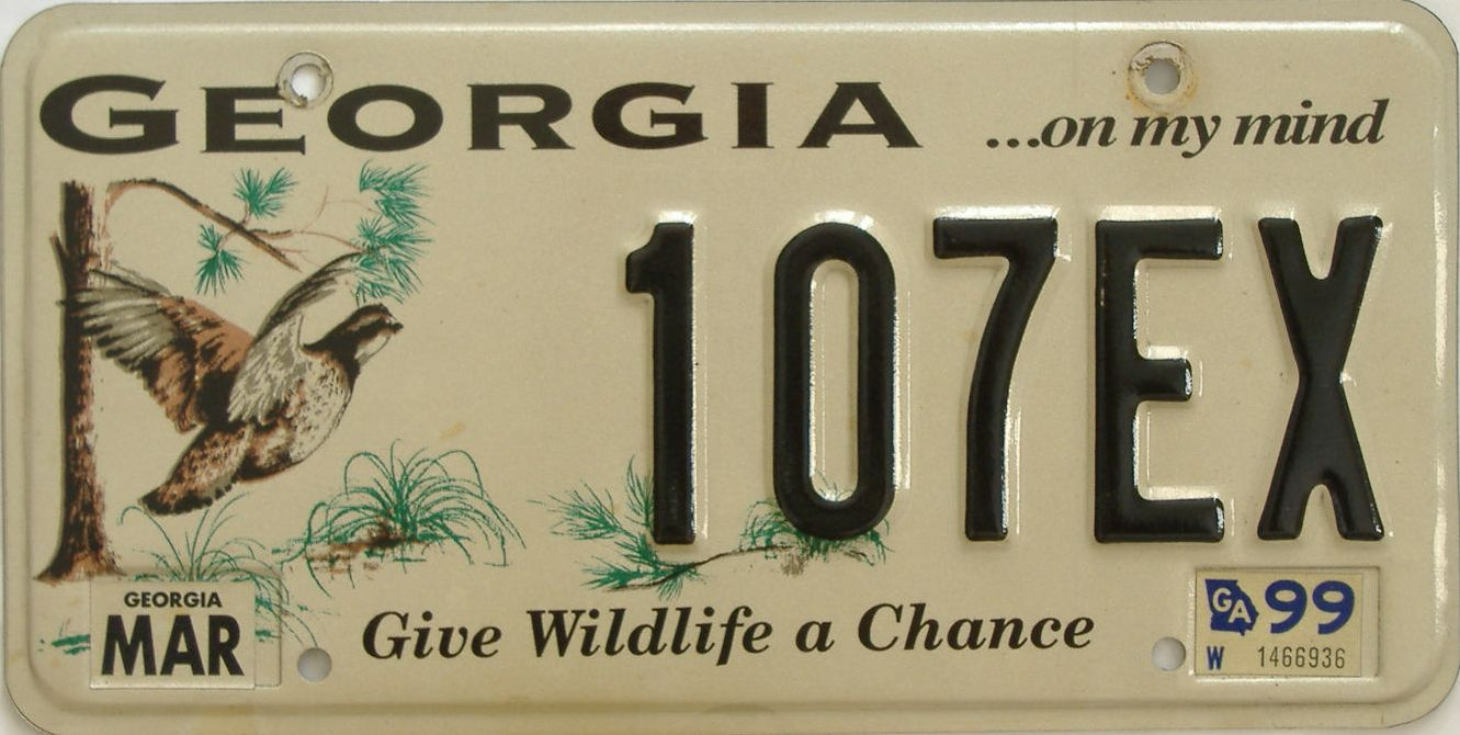1999 Georgia (Natural) license plate for sale