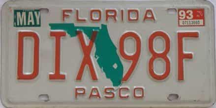 1993 FL