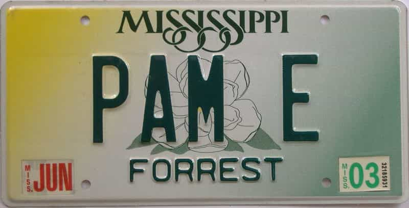 2003 Mississippi  (Natural) license plate for sale