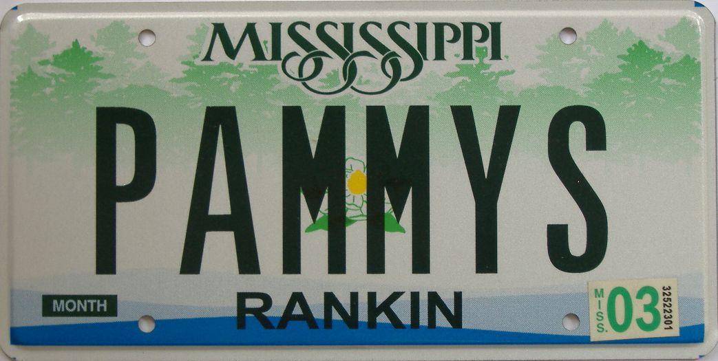 2003 Mississippi (Natural) license plate for sale