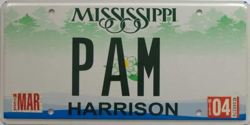 2004 Mississippi (Natural) license plate for sale