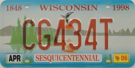 2006 Wisconsin (Natural Single) license plate for sale