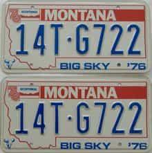 1976 MT (Pair)