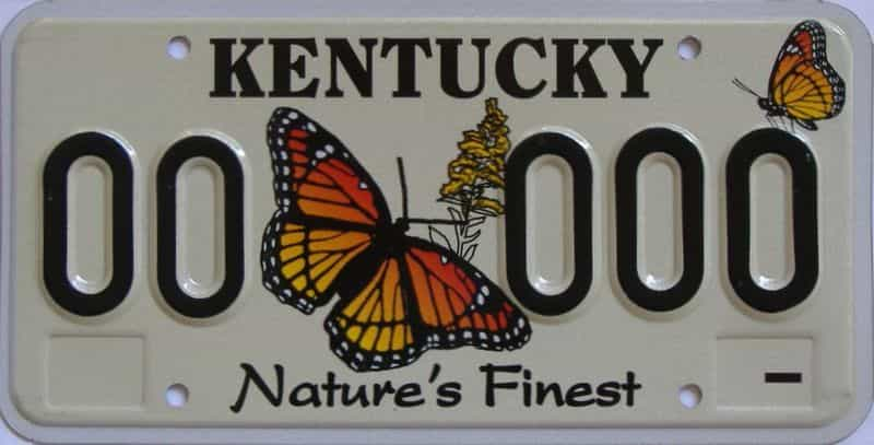 KY (Sample) license plate for sale