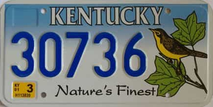 2001 Kentucky  (Natural) license plate for sale