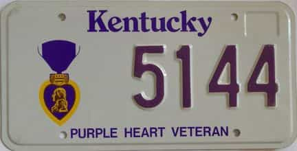 Kentucky license plate for sale