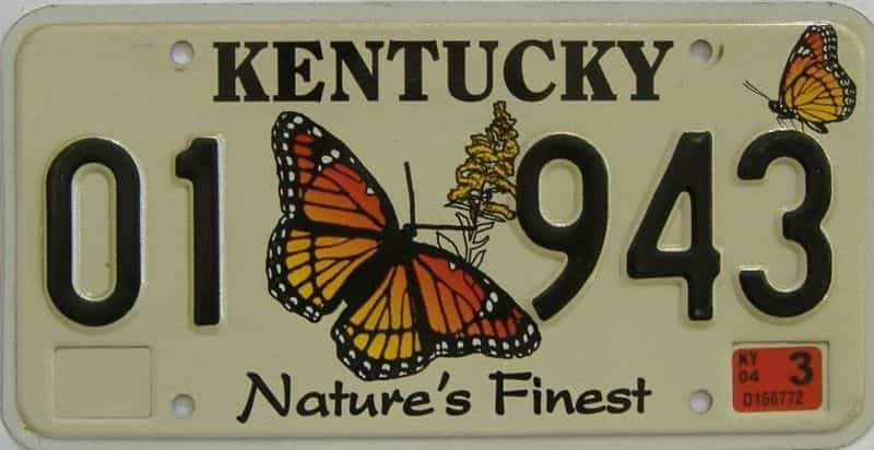 2004 Kentucky (Natural) license plate for sale