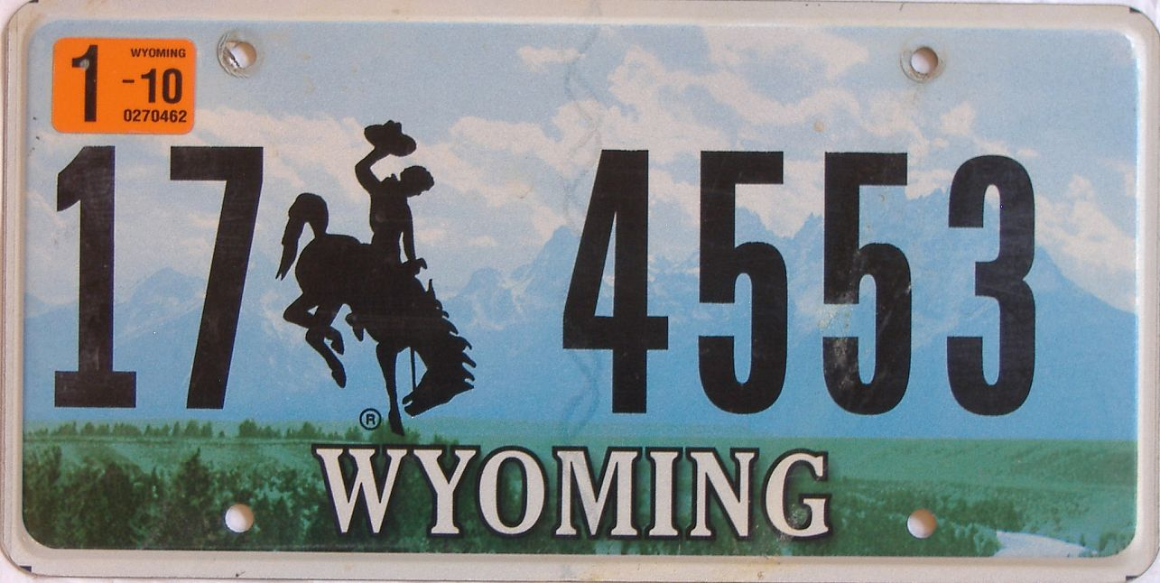 2010 WY (Natural Single) license plate for sale