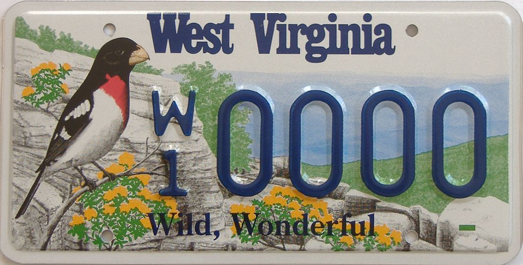 WV (Sample) license plate for sale