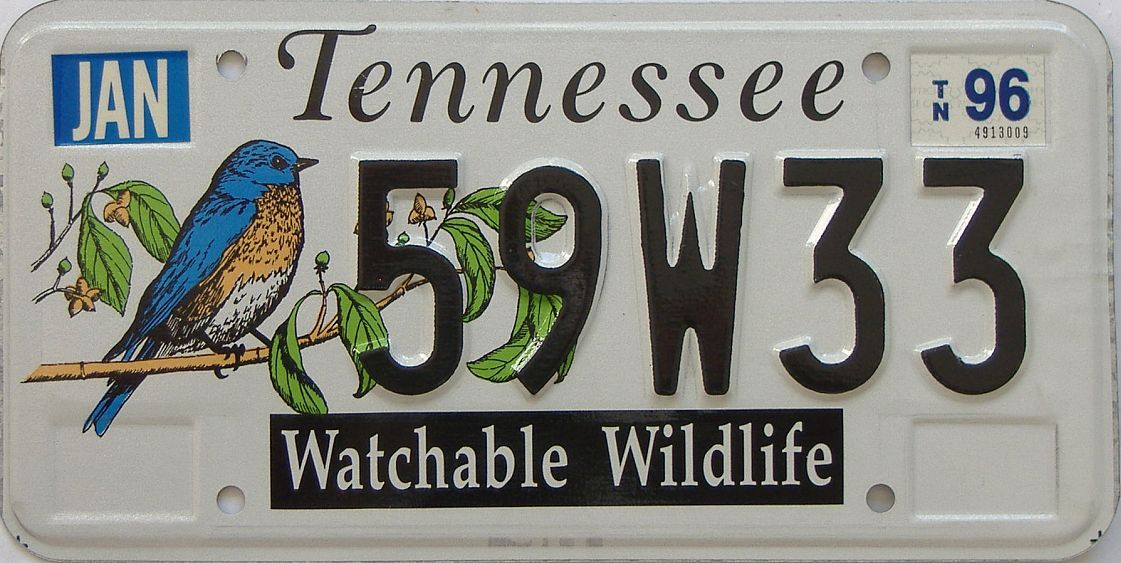1996 TN (Natural) license plate for sale