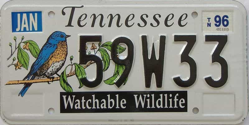 1996 Tennessee (Natural) license plate for sale