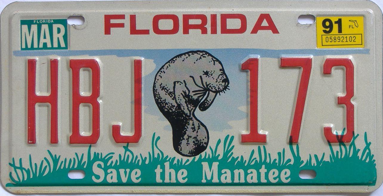 1991 FL (Natural) license plate for sale