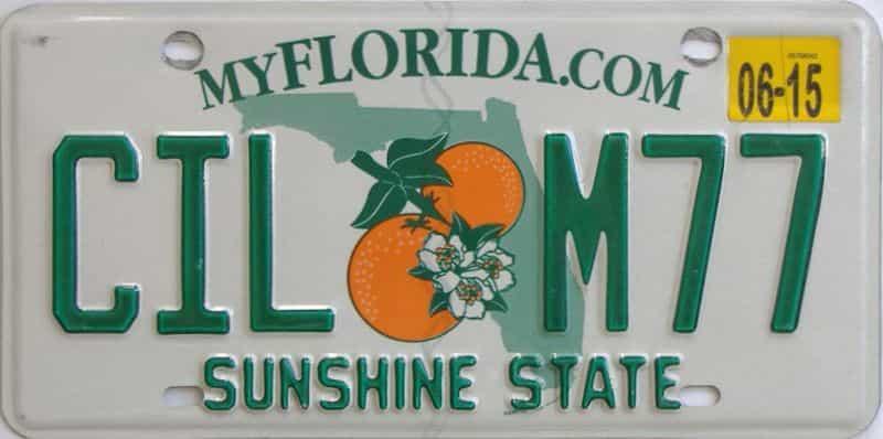 2015 FL (Natural) license plate for sale