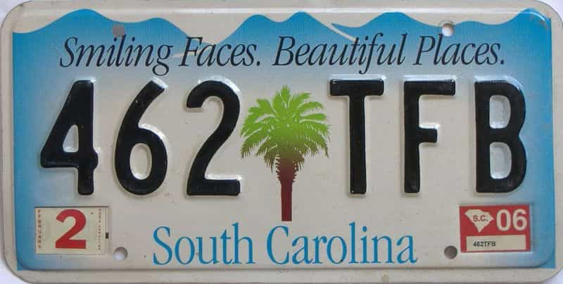 2006 South Carolina (Natural Single) license plate for sale