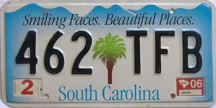 2006 South Carolina (Natural Single) license plate for sale