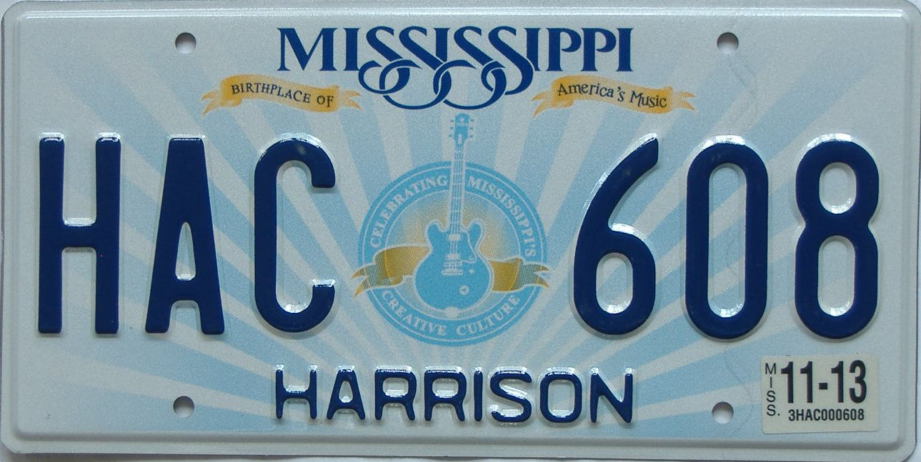 2013 MS (Natural) license plate for sale