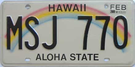 2009 Hawaii (Natural) license plate for sale