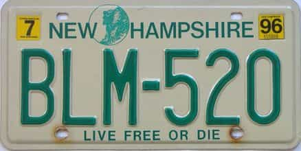 1996 New Hampshire (Natural Single) license plate for sale