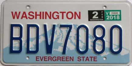 2018 Washington (Natural Single) license plate for sale