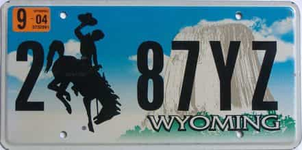 2004 Wyoming (Single) license plate for sale