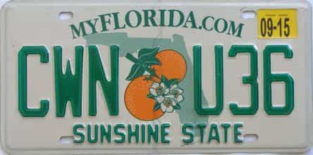2015 Florida (Natural) license plate for sale
