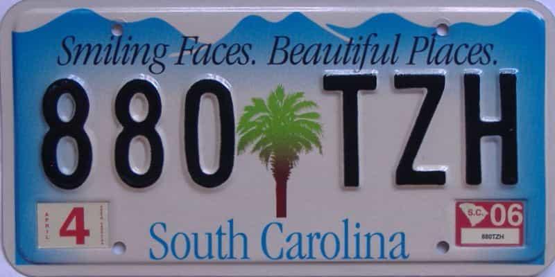 2006 South Carolina (Natural) license plate for sale