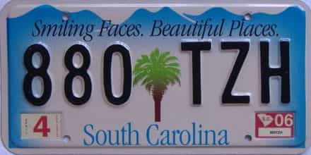 2006 South Carolina (Natural) license plate for sale