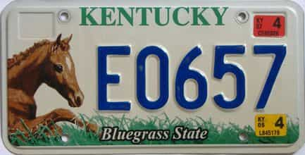2007 Kentucky license plate for sale
