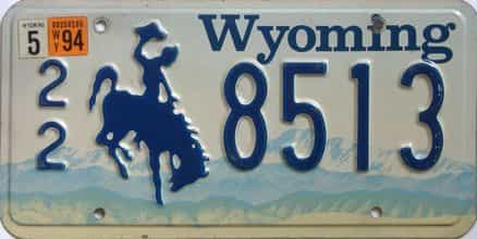 1994 Wyoming (Single) license plate for sale