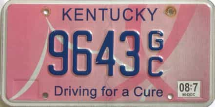 2008 Kentucky license plate for sale