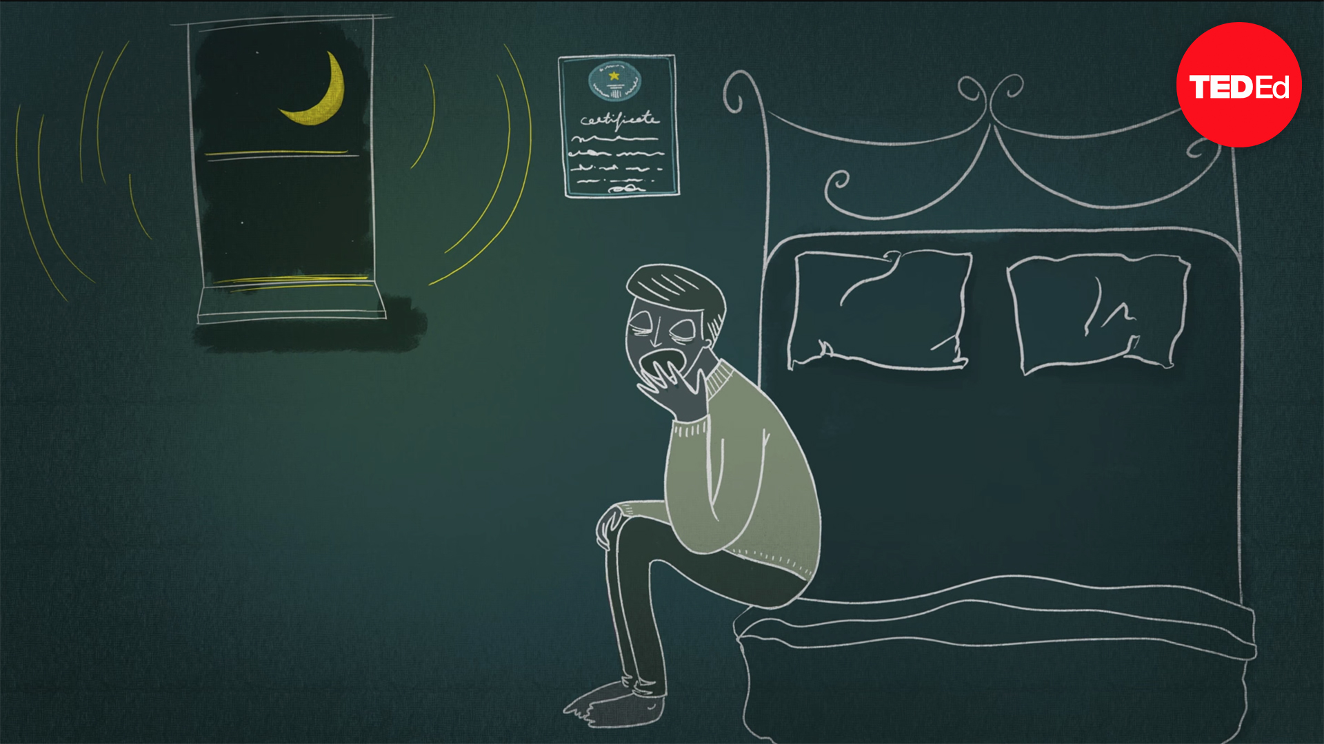Matt Walker: Sleep is your superpower | TED Talk