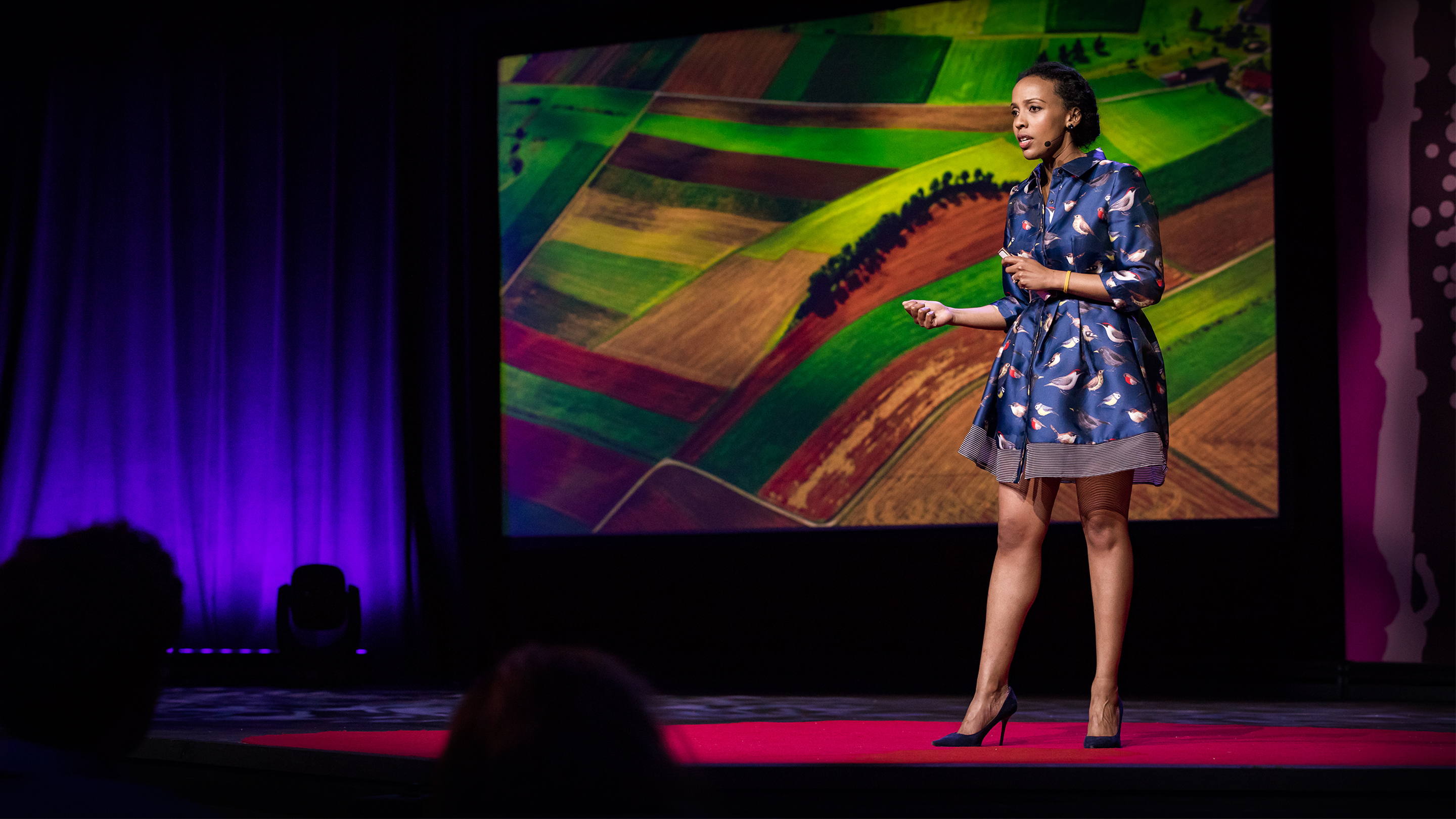 Best Ted Talks 2020.A Global Food Crisis May Be Less Than A Decade Away