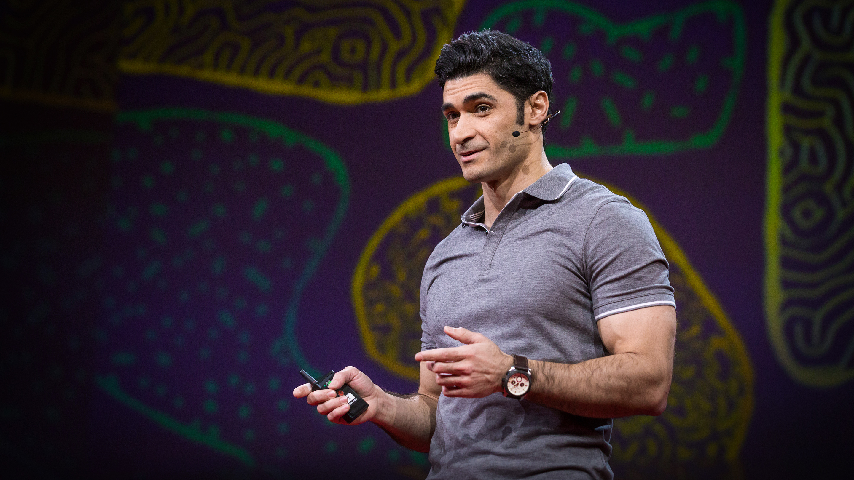 Mehdi Ordikhani: What happens in your brain when you pay attention to something 82