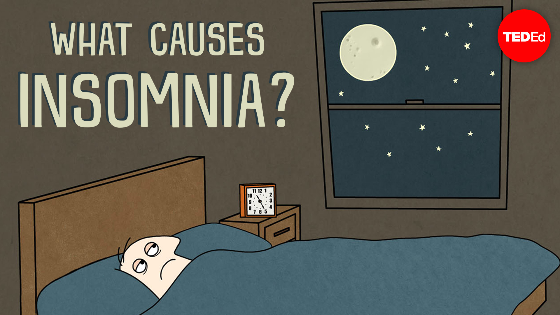 dan kwartler: what causes insomnia? | ted talk