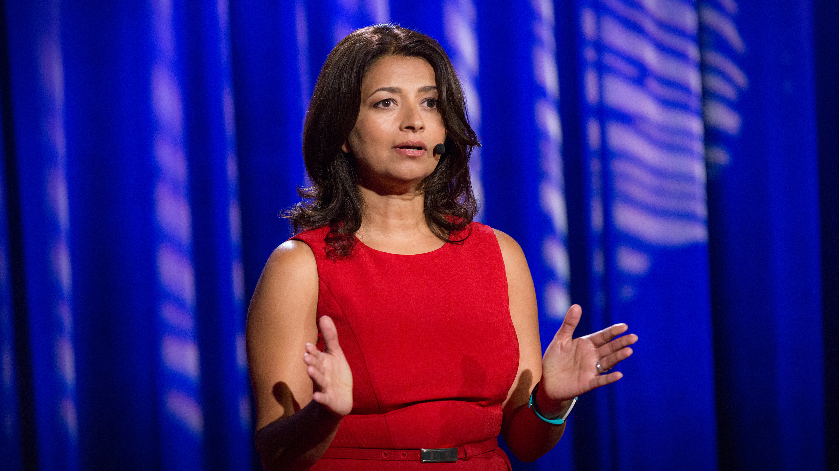TED Talks: Immigrant voices make democracy stronger cover