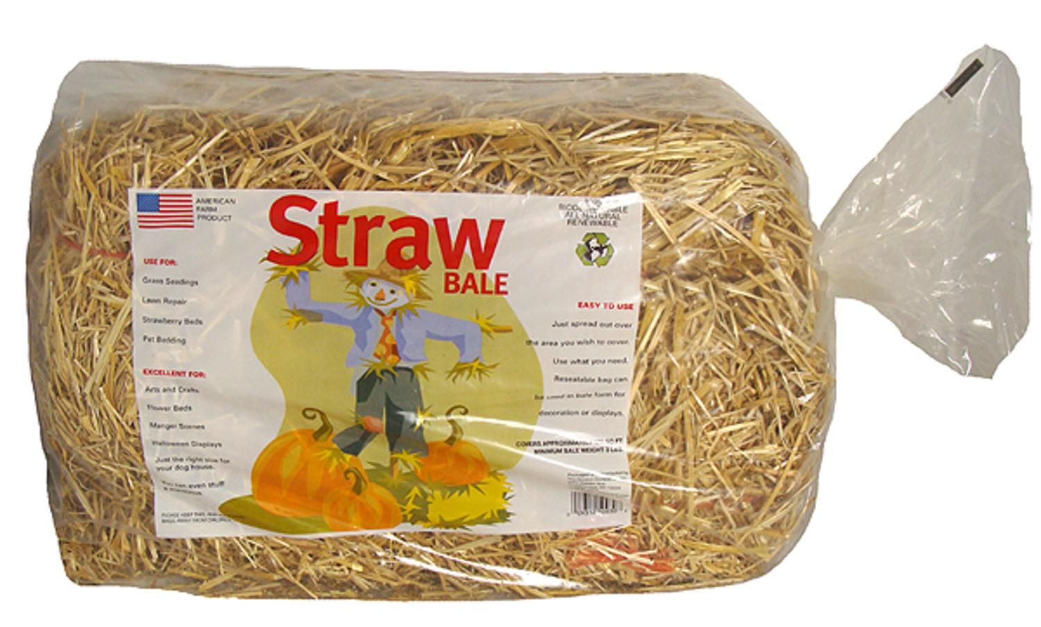 Mini straw bale for thanksgiving or christmas decorations for Straw bale house cost per square foot