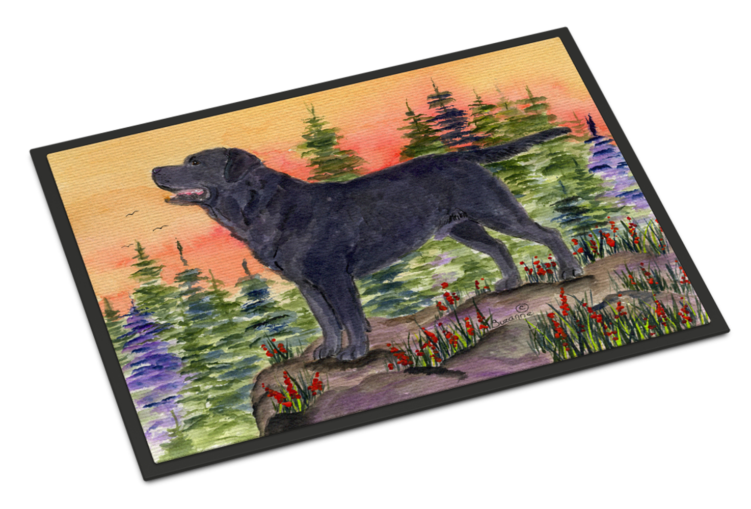 Labrador Indoor Outdoor Mat 18x27 Doormat Tanga