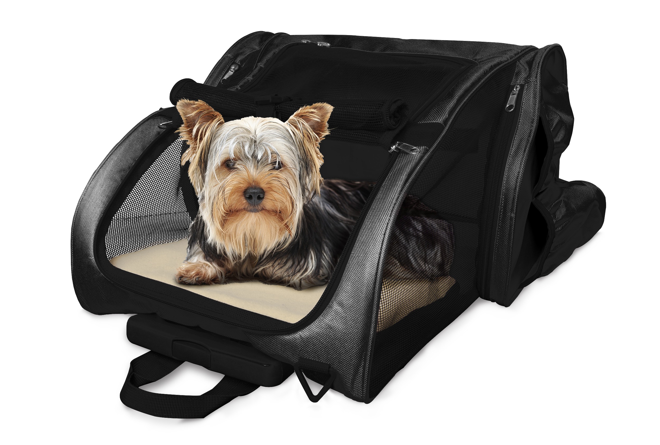 Pet Backpack Roller Carrier Tanga