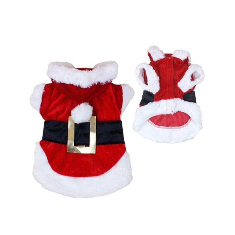 christmas santa dog costume tanga. Black Bedroom Furniture Sets. Home Design Ideas