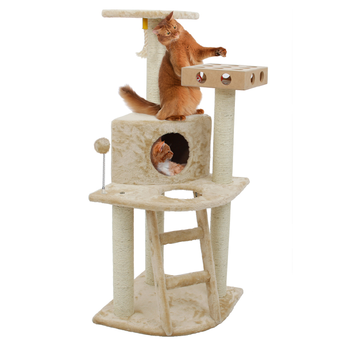 Deluxe Cat Clubhouse with Cat- IQ Busy Box d070612a3b1c