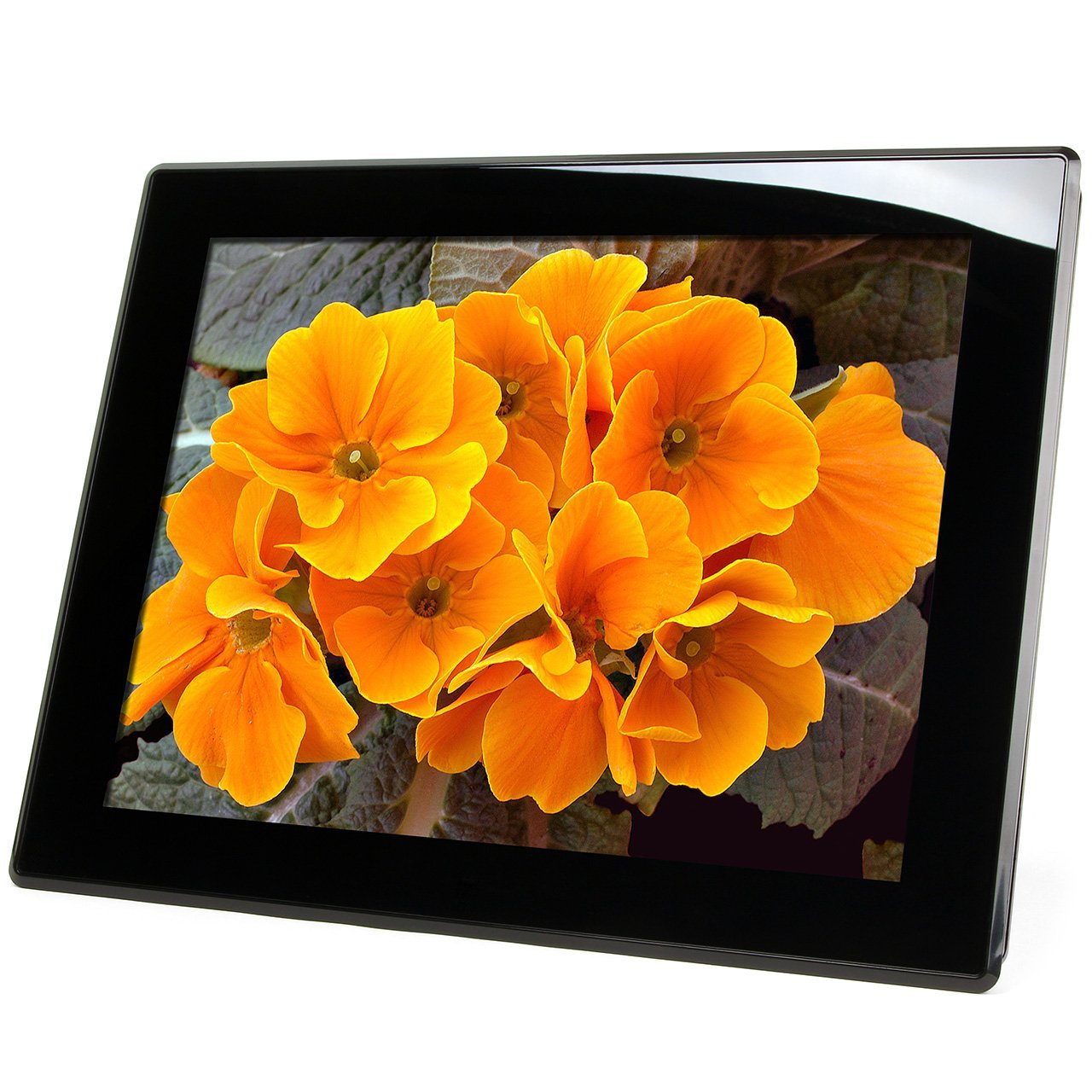 Micca 15-Inch 1024x768 Digital Photo Frame w/Auto On/Off Timer - Tanga