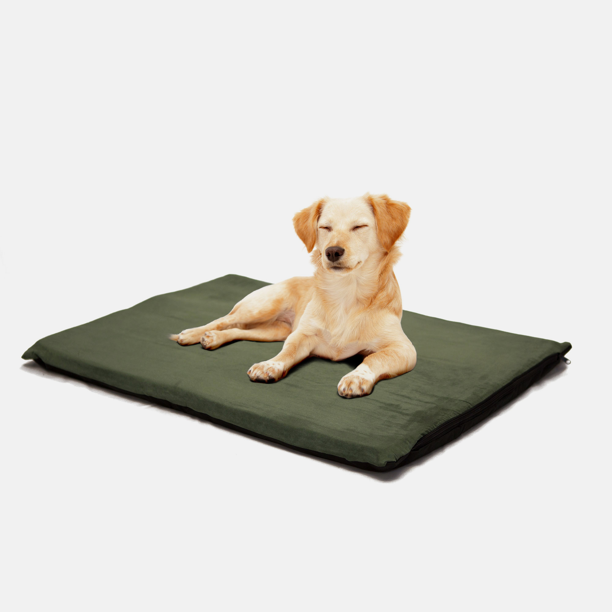 PAW 2  Orthopedic Foam Pet Bed - Suede Forest