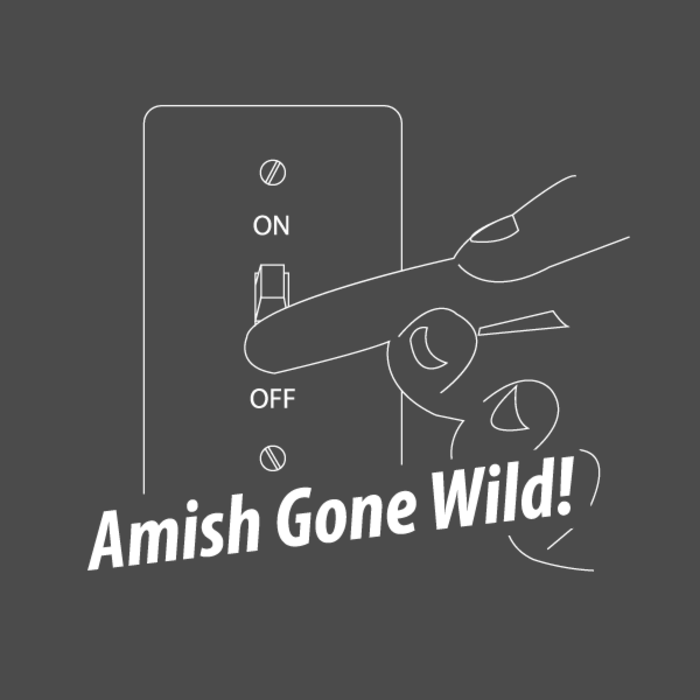 amish gone wild essay - amish gone wild the main point of this video was to show how the lives of amish teens are changed drastically when between the ages of 16 and 21 they are faced with a whole new lifestyle this then leads them to face a very difficult decision.