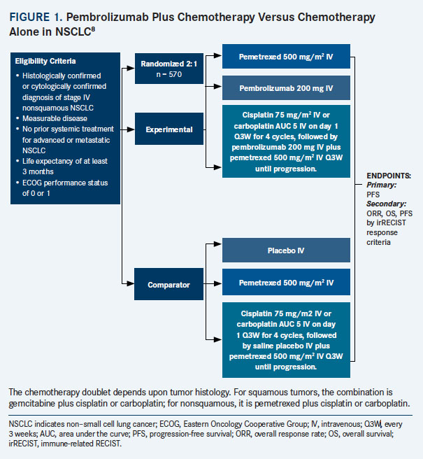 Emerging Treatment Strategies for Nonsquamous Non-Small Cell