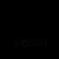 تصميم لوجو فوتوغرافي logo design photographe